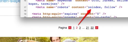 Voorbeeld paginering en meta tag robots (noindex,follow)